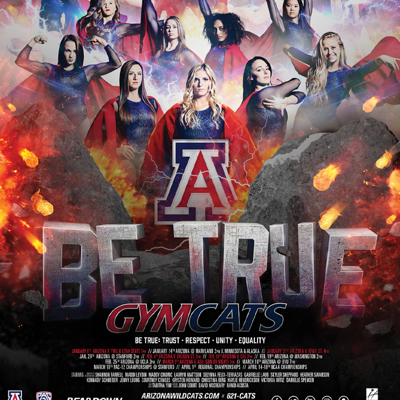 2016 Gym Cats Poster